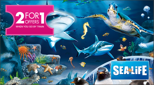 2 for 1 offers at Sea Life: London Aquarium when you go by train
